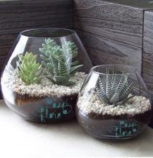 Passiflore vase